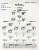 JULY 24 1944 FORMATION 3