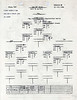 JULY 25 1944 FORMATION 1