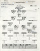 JUNE 4 1944 PM FORMATION
