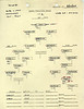 MARCH 18 1944 FORMATION 1