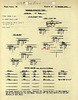OCT 15 1944 FORMATION 1