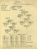 OCT 25 1944 FORMATION 1