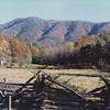 The Lawson Place, Cades Cove