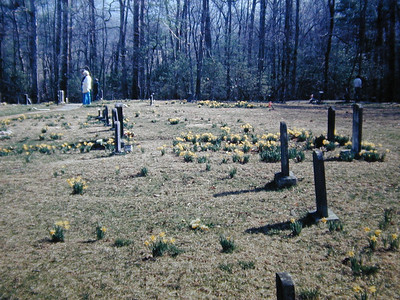 Cemetery in the Cove