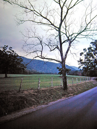 Cades Cove from a Bicycle