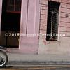 EPV0517_23 5x15 6_Green cycle copy