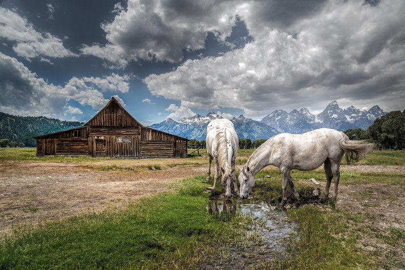 Morman Barn, Tetons