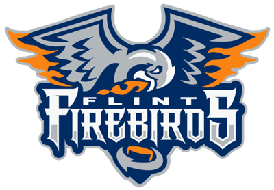 Flint Firebirds - Squirt AA