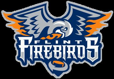 Flint Firebirds - Squirt AA