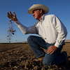 "MENDOTA,CA---- MENDOTA DROUGHT 1--Joe Del Bosque lets a hand full of what he calls "" some of the best soil in the country,"" fall through his fingers on Thursday, July 2, 2009. Del Bosque tilled this field which is part of 120 acres for tomatoes but didn't get enough of a water allocation to plant the field. Del Bosque pays $30 to $40K to rent land. When he doesn't plant because for lack of water, it has a negative economic impact on his bottom line. Del Bosque primarily farms cantelope. Photo/ Tomas Ovalle"