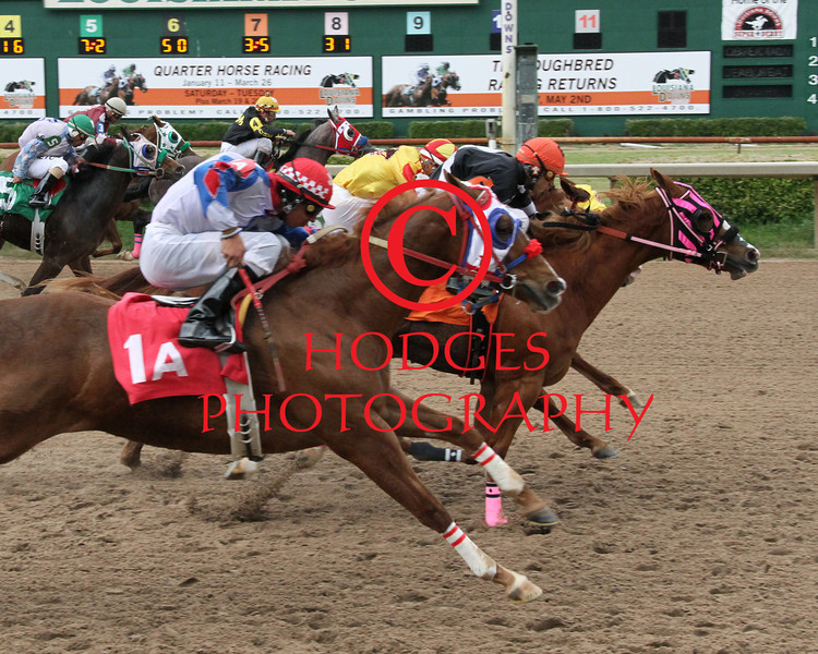 3/22/2014 Gotta Run Miss with Eddi Martinez aboard manages to hold off Meduzza with Saul Ramirez, Jr. (yellow and red silks) up and Jmf Shazoomer with Juan Garcia, Jr. (white, red and blue silks) up to win the 8th running of the Harrah's Futurity at Louisiana Downs. Hodges Photography / Lynn Roberts