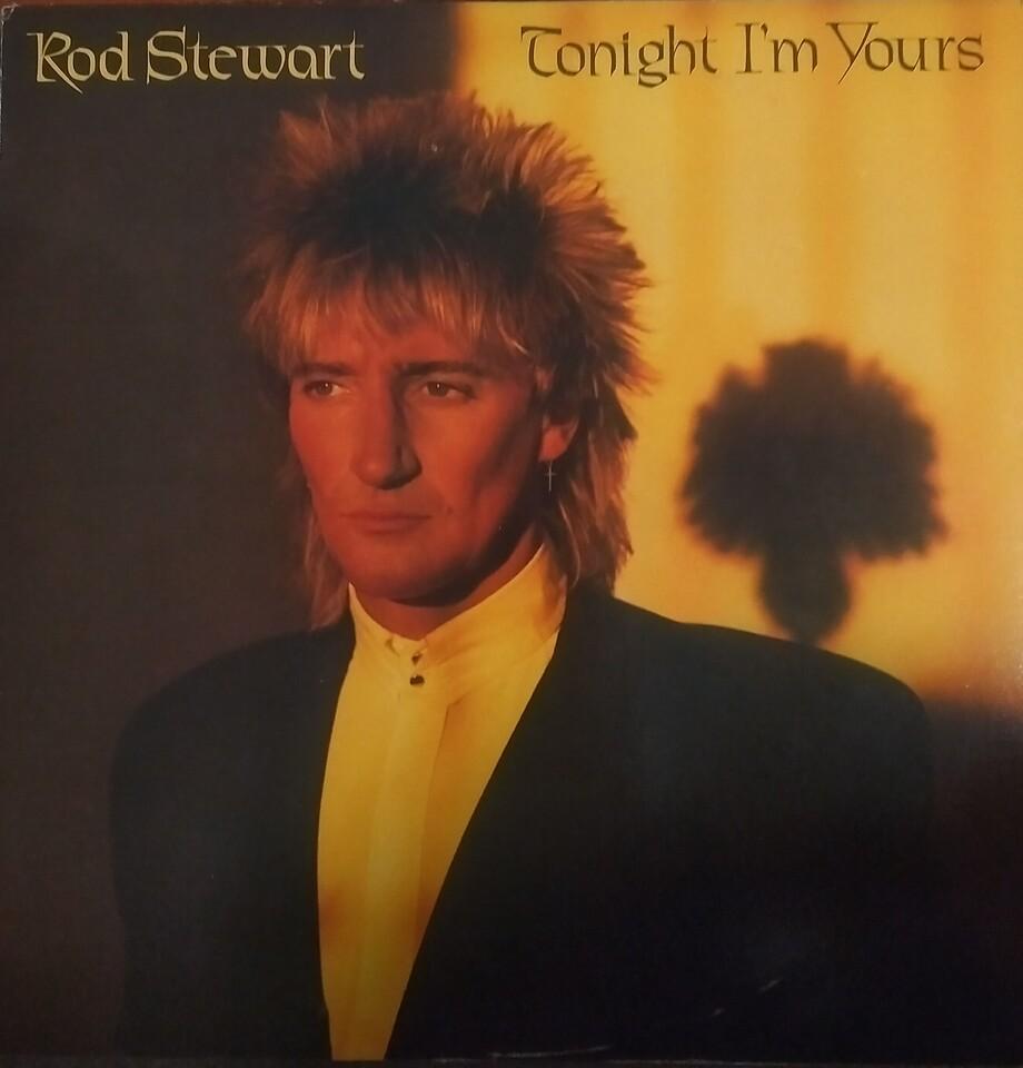 Rod Stewart - Tonight I'm Yours (Warner Bros. Records - XBS 3602) Media VG Sleeve VG