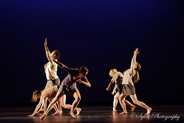 Verisimilitude- LSU Dance Spring 2014