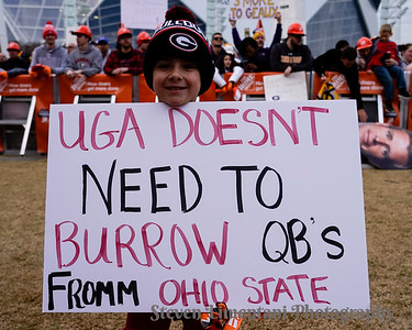 Georgia fan