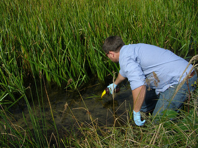 """NTL-LTER Site manager and CFL postdoc, Noah Lottig assists with Steve Powers' demonstration of one nutrient tracking method by pouring a fluorescent green dye """"tracer"""" upstream of the site review team on North Creek."""