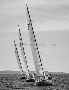 NM  Sailboats (B&W)