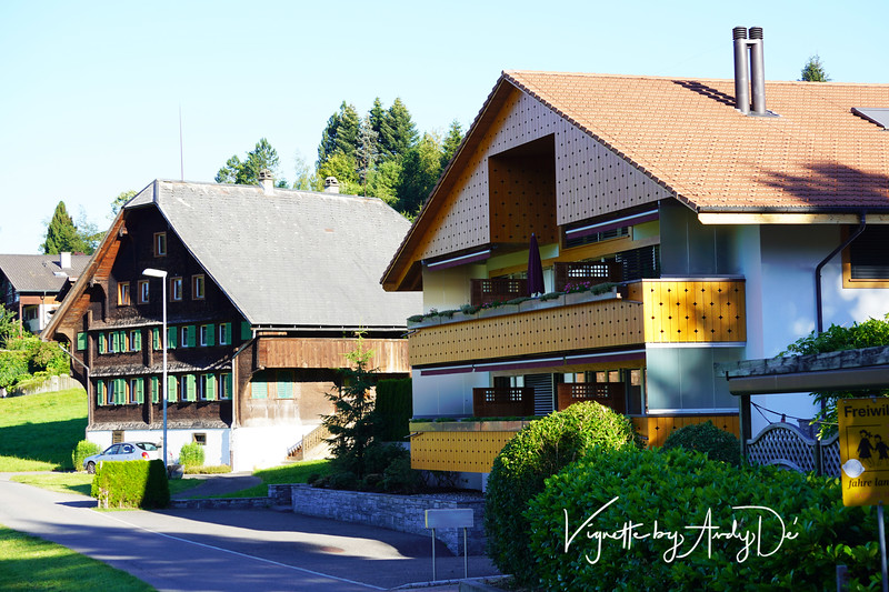 "Impressive Swiss Chalets down the road from our hotel lent to our ""Swiss Experience""!"