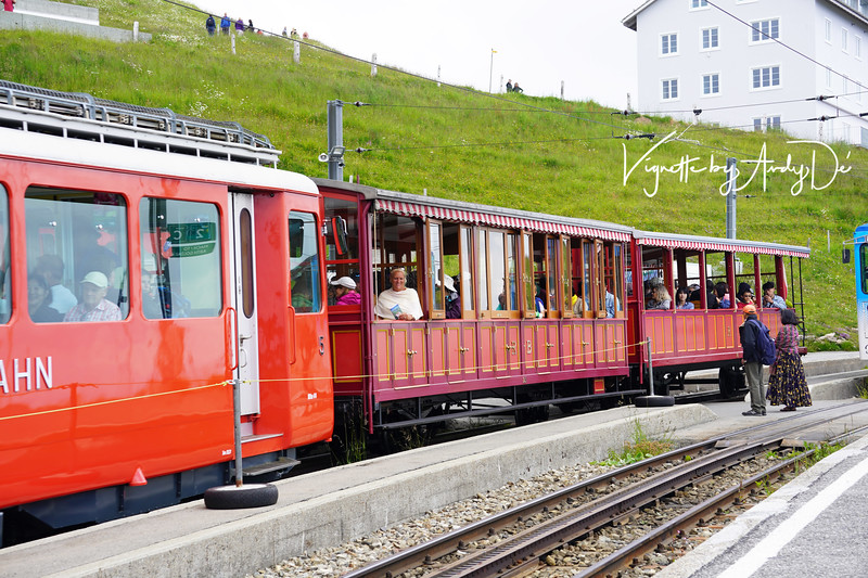The Cogwheel Trains which take you up to the apex of Mount Rigi and Mount Pilatus, and are arguably, the most compelling experience in this beautiful country, given the spectacular vistas of the Alpine landscapes that you can only witness in Switzerland!