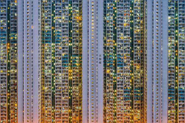 Sardine City (2017)