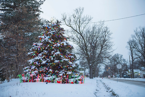 Joed Viera/Staff Photographer-A Christmas tree lights up on the Corner of Caledonia and Hawley Streets.