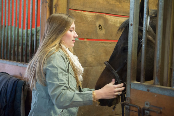 Joed Viera/Staff Photographer-Madeline Keyes takes her quarterhorse Jackson out of his stable.
