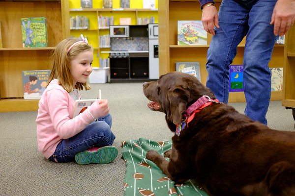 JOED VIERA/STAFF PHOTOGRAPHER-Sophia Kimmel, 5, reads  a book to Abby, the Lockport Public Library's reading therapy dog. Kimmel chose to read Abby her personal copy of  'Brown Bear, Brown Bear, What Do You See?'.