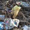 Joed Viera/Staff Photographer-Plastic Bags litter the fields behind the Tops Plaza.