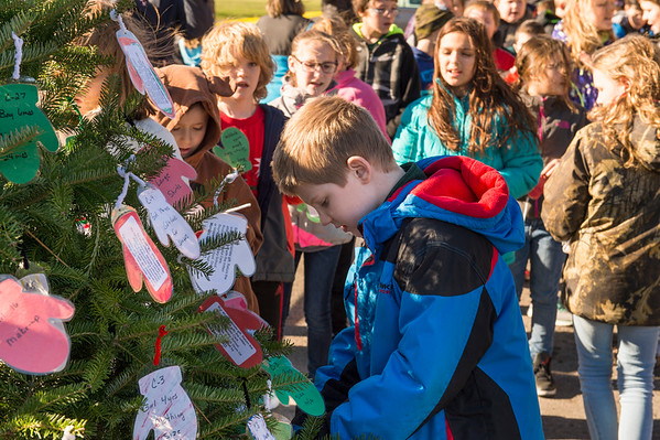 "Kaleb Pusateri, 9, along other Roy-Hart student place ""mittens"" on the Gasport Lions Club's tree at the Gasport Post Office for the Lions' long-running Community Christmas program. The mittens have a child's age, gender and a gift idea listed on the back. The community is invited to pick a mitten, purchase the item and return it (unwrapped) to one of the drop off locations, also listed on the back. The purpose of the program is to help families in the Roy-Hart School district that are in need of a little Christmas cheer."