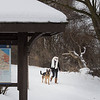 JOED VIERA/STAFF PHOTOGRAPHER-Gasport, NY-Erica Little walks her dog Cain down the Erie Canalway Trail by Gasport.