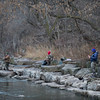 Joed Viera/Staff Photographer-Anglers search for illusive steelhead at Fisherman's Park Tuesday afternoon.