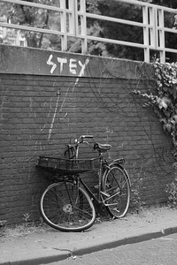 STEY Bicycle