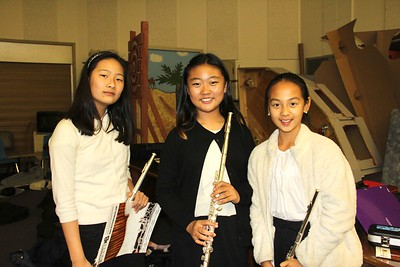 4390 Eliza Kim, Joyce Kang and Sophie Lyu