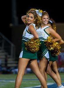 2014 LCC Cheerleaders