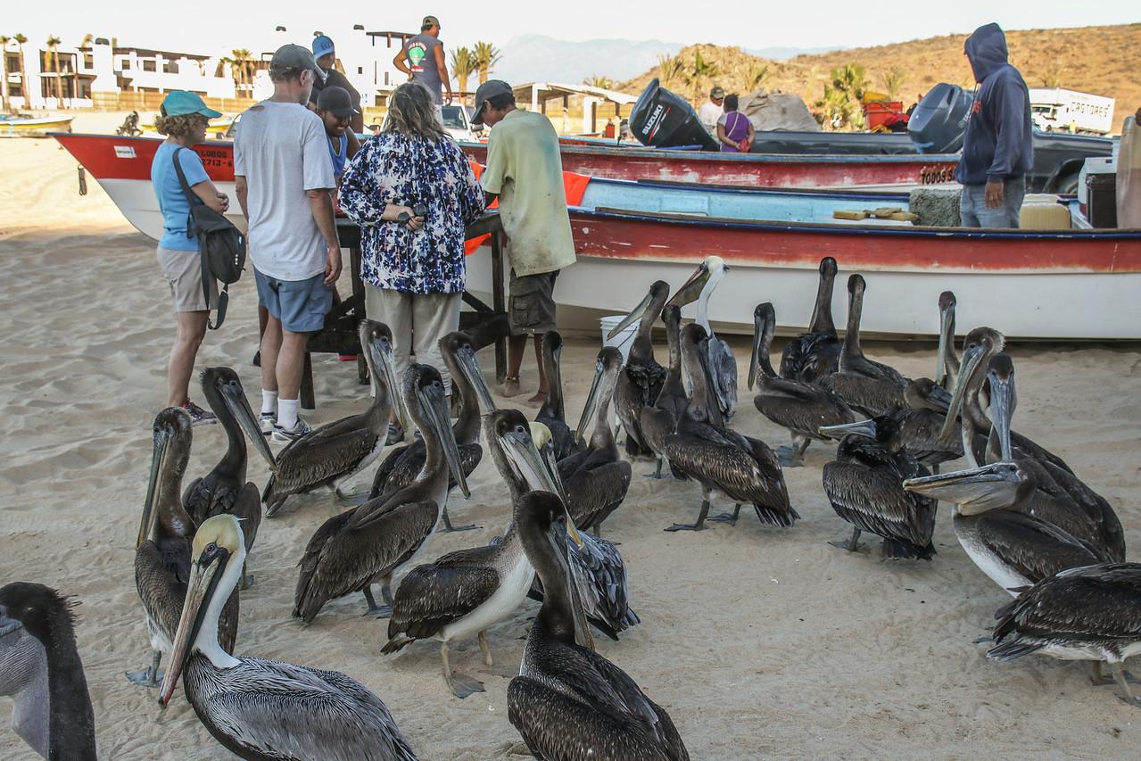 Punta Lobos Fishermen