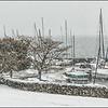Neige  -  La Tour de Peilz  -  Suisse