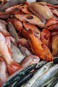 Pescado local. Mindelo, Sao Vicente (Cabo Verde)