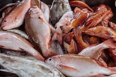 Pescado local, garopa. Mindelo, Sao Vicente (Cabo Verde)