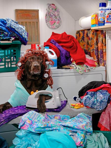 LaundryLab01.tif