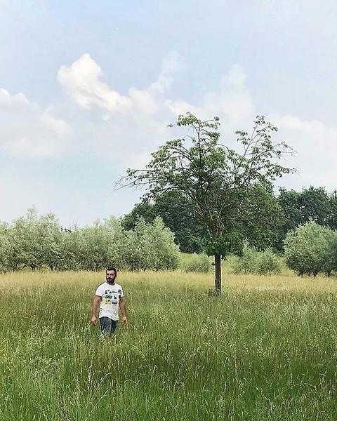 • Piemonte • Solo, circondato dal verde e in compagnia della natura, ecco uno dei motivi per cui adoro vivere in provincia di #Biella. Allergia ai pollini permettendo 😜 . . . #Cavaglià #ExploreBiella #ExploreCavaglià #innamora