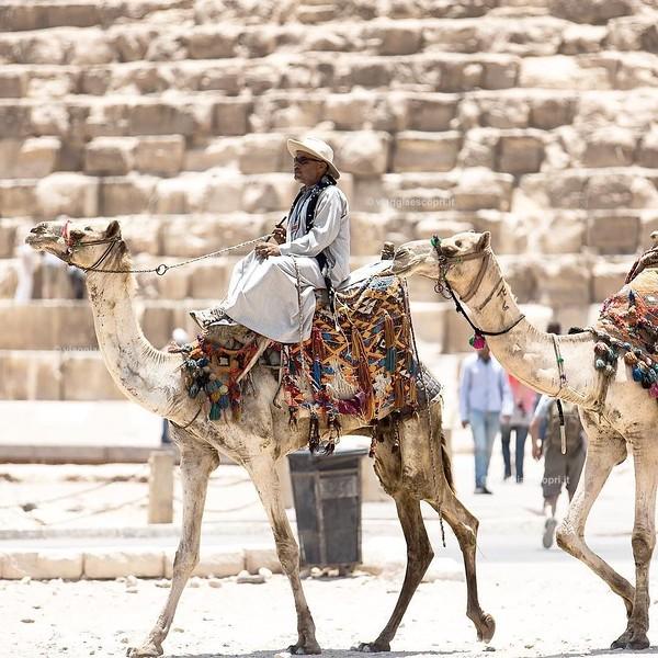 Scatti di quotidianità dall'#Egitto, #thisisEgypt ci ha mostrato una terra ricca di fascino tutta da riscoprire, hai già letto l'articolo con le impressioni di Alessio? Lo trovi sul mio blog (link in bio). : @alessiosanavio #veraclasseegypt #Egitto