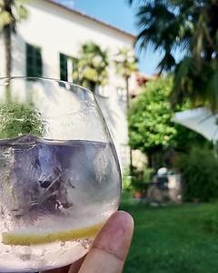 In questa calda estate la cosa più bella è un drink fresco, come questo gin tonic al bergamotto e fiori blu della Thailandia. Una sosta al @realcastello_verduno è sempre una buona scelta se passi nelle #Langhe . . . #Cuneo #eccellenzainpiemonte #Verduno