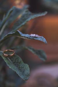 BIAS WEDDING-0181