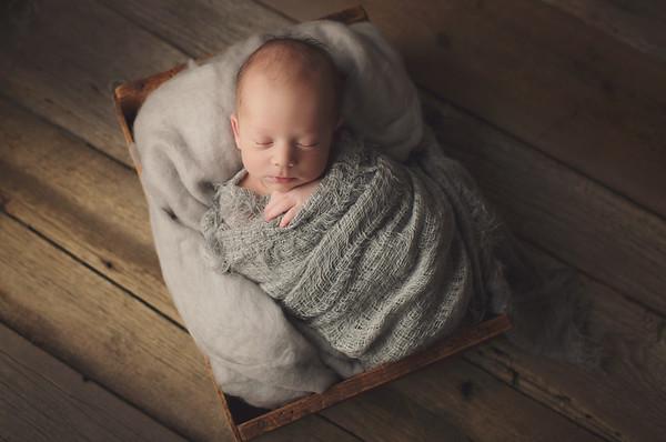 lachlan newborn