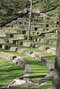 20090418 Swarthmore (10)