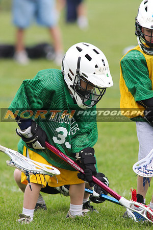 (K grade Boys) 2 Harborfields Gold vs. 4 Harborfields Green
