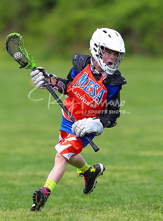 Spring Lax Fest - games up to 11:30 AM