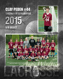 Zweig Clay LAX Collage