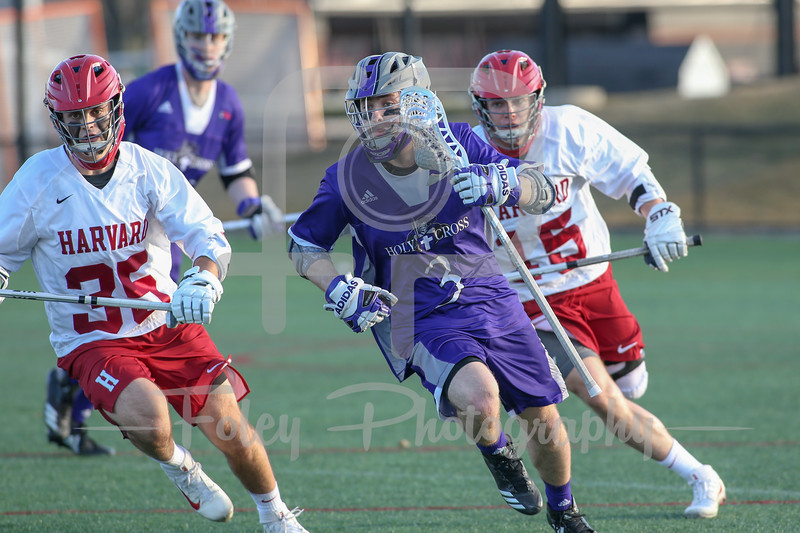 Holy Cross at Harvard