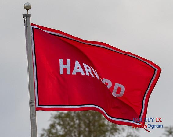 Harvard - Crimson