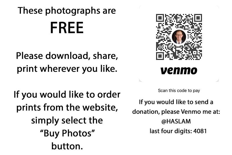 Free Venmo copy